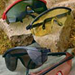 Safety Glasses -